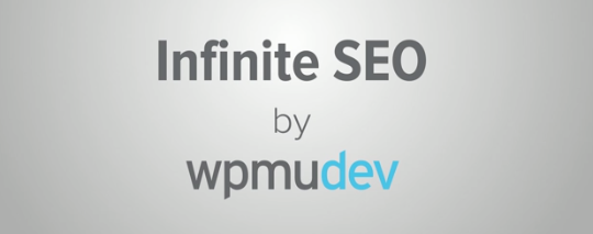 Infinite SEO Plugin