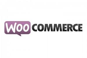 Woocommerce wordpress webshop plugin
