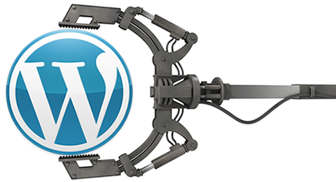 WordPress development wordpress plugins