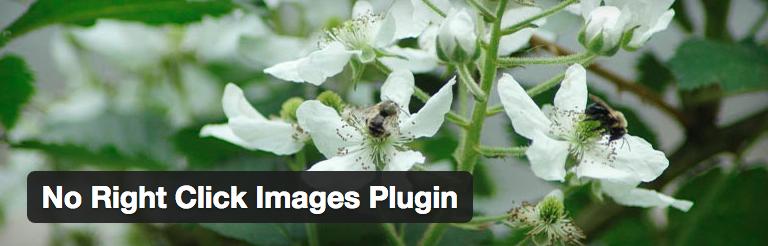 No Right Click Images Plugin voor WordPress