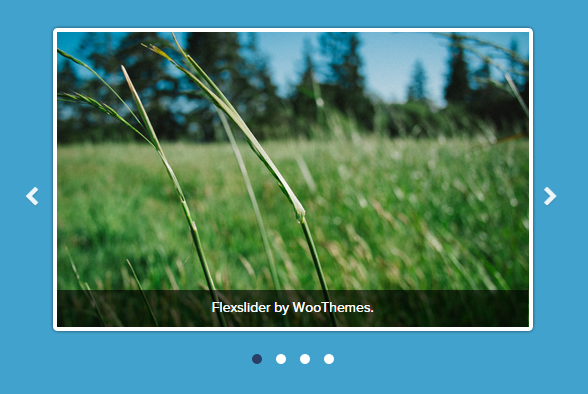flexslider voor wordpress websites