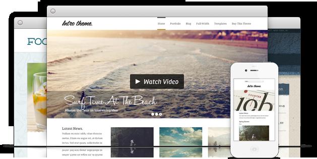 premium WordPress thema's