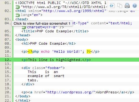 Zo toon je eenvoudig code in je WordPress berichten