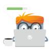 WordPress website update abonnement