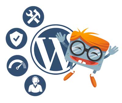WordPress website update pakket van WP Handleiding