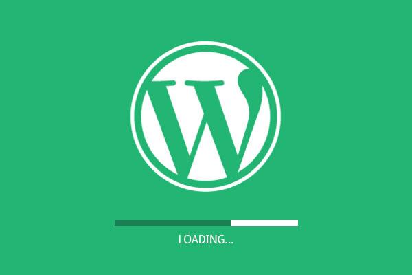 snelle wordpress website