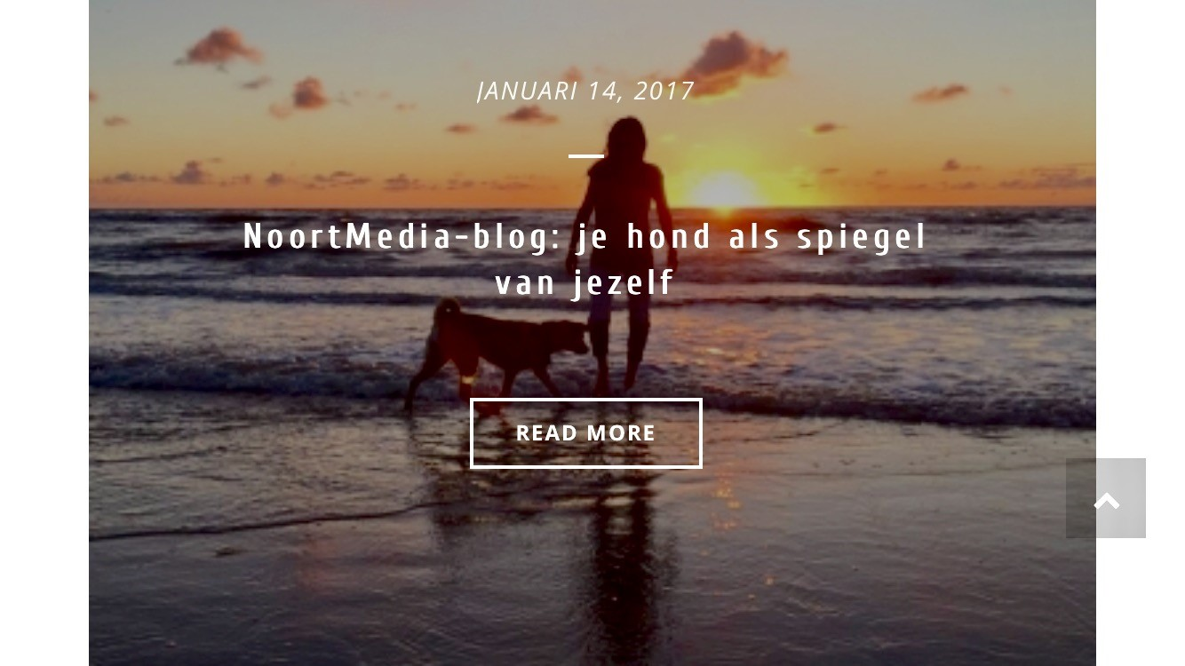 Succesvolle blog