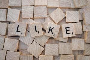 Social media plugin wordress